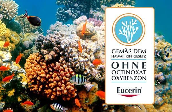 Korallenschutz